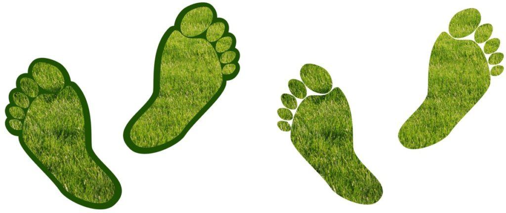 office carbon footprint